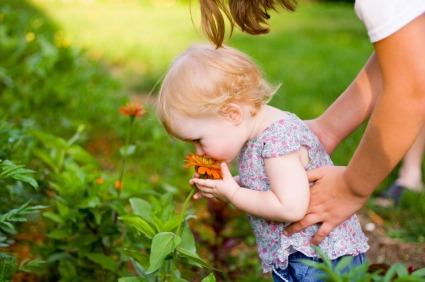 Milyen a bababiztos kert?